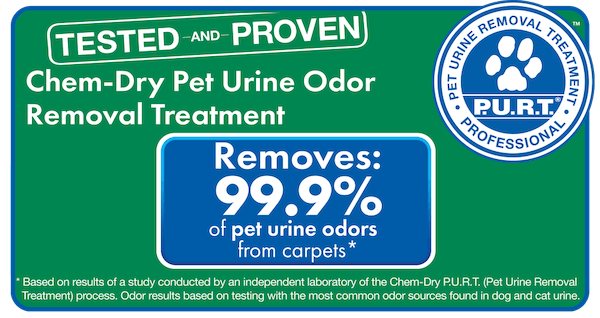 Our P.U.R.T.® treatment is 99.9% effective on average at eliminating pet urine odors.